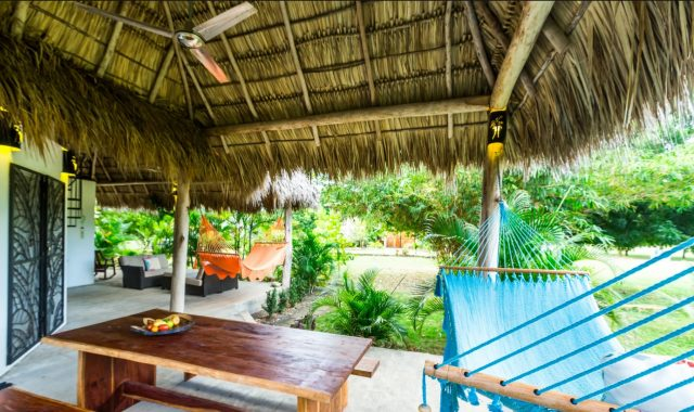 Casa Palmas Outdoor I Web