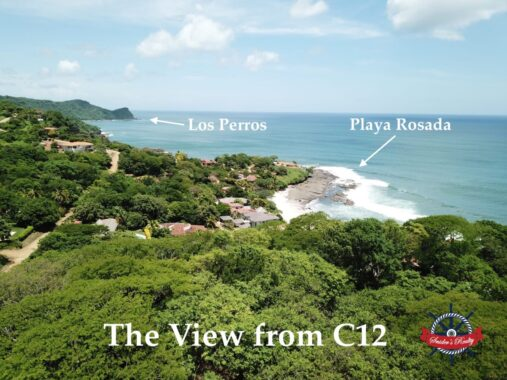 C12 View Web